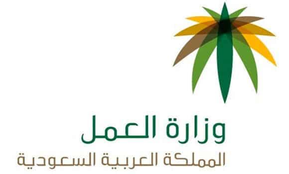 Photo of استعلام عن وافد : تعرف على خطوات الاستعلام برقم الاقامة والحدود والجوازات